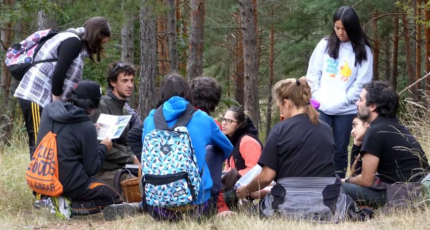 El papel fundamental de la educación medioambiental en la sociedad.