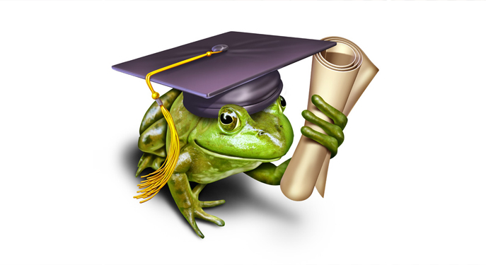 educacion-ambiental 2